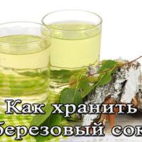 Срок и правила хранения березового сока
