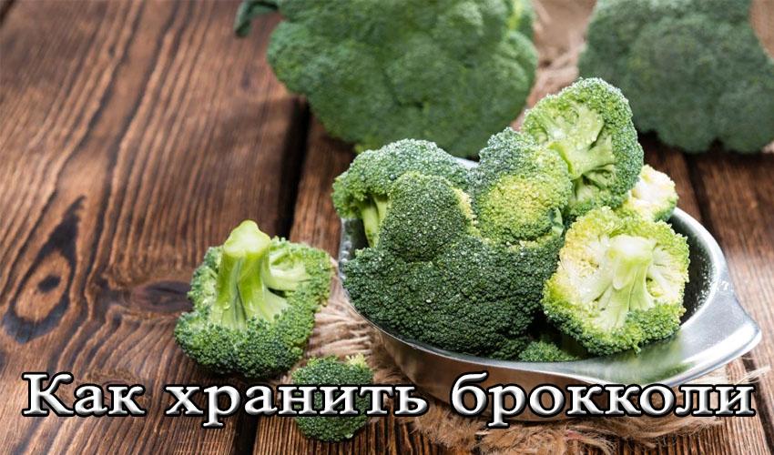 Как хранить свежую брокколи