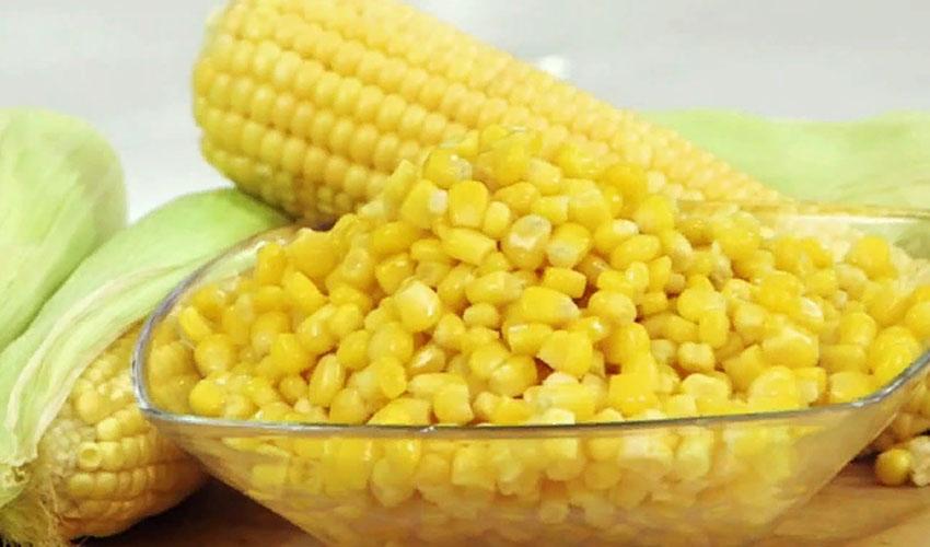 хранить кукурузу