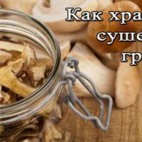 Срок и условия хранения сушеных грибов