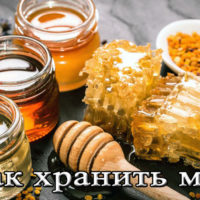 Срок и условия хранения меда в домашних условия