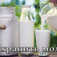 Срок и условия хранения молока в домашних условиях