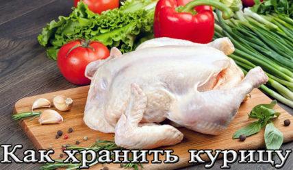 Температура, срок и условия хранения охлажденной и замороженной курицы