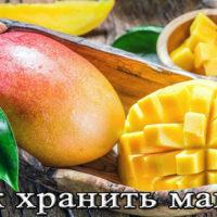 Срок, температура и условия хранения манго дома