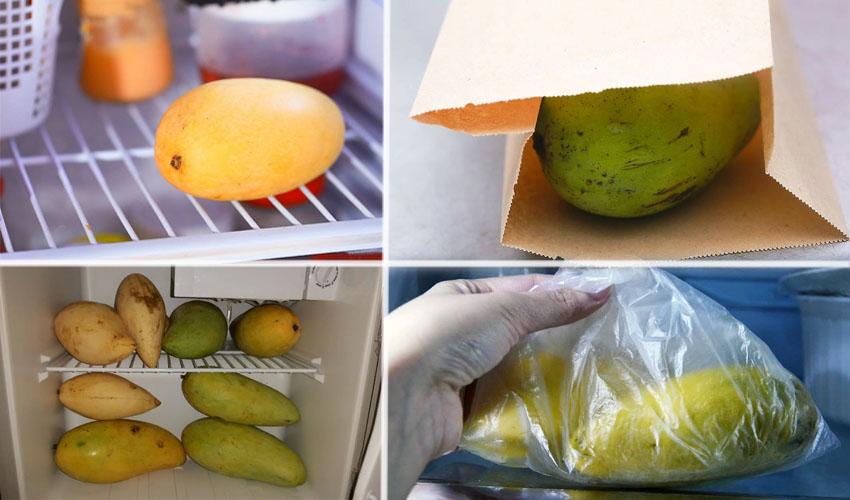 манго в холодильнике