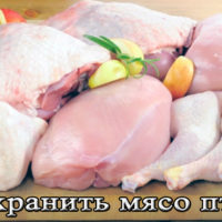 Хранение мяса птицы (цеплят) в домашних условиях