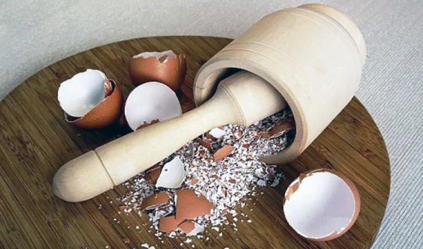 толченная скорлупа яиц