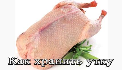 Срок и условия хранения мяса утки в домашних условиях и на охоте