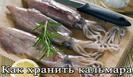 Срок и условия хранения кальмаров в охлажденном, замороженном и сушенном видах