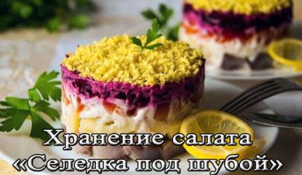 Как правильно и сколько можно хранить салат седелка под шубой