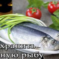 Условия и сроки хранения соленой рыбы (в холодильнике, морозилке, рассоле)