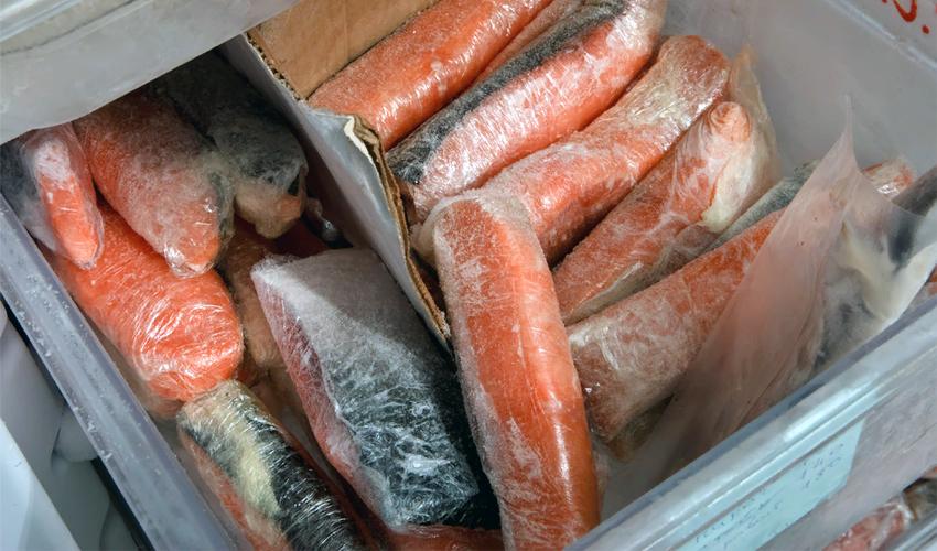 красная рыба в морозилке