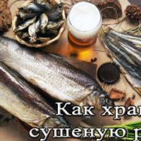 Условия и сроки хранения сушеной рыбы