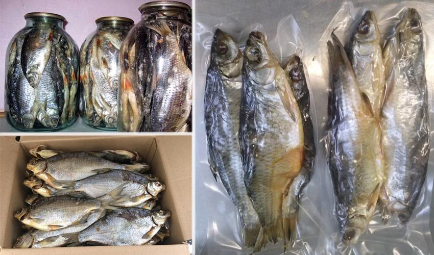 способы хранения сушеной рыбы
