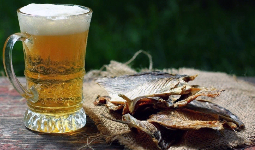 таранька с пивом