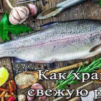 Срок, условия и температура хранения свежей рыбы