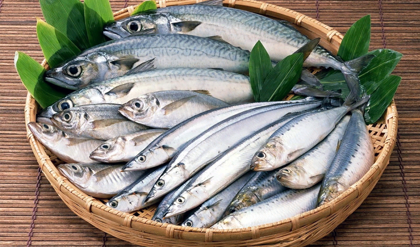 рыба в корзинке