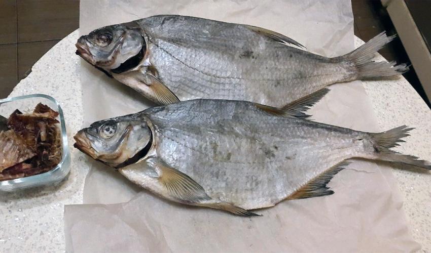 хранение вяленной рыбы