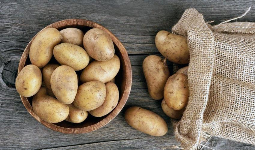 как выбрать картофель