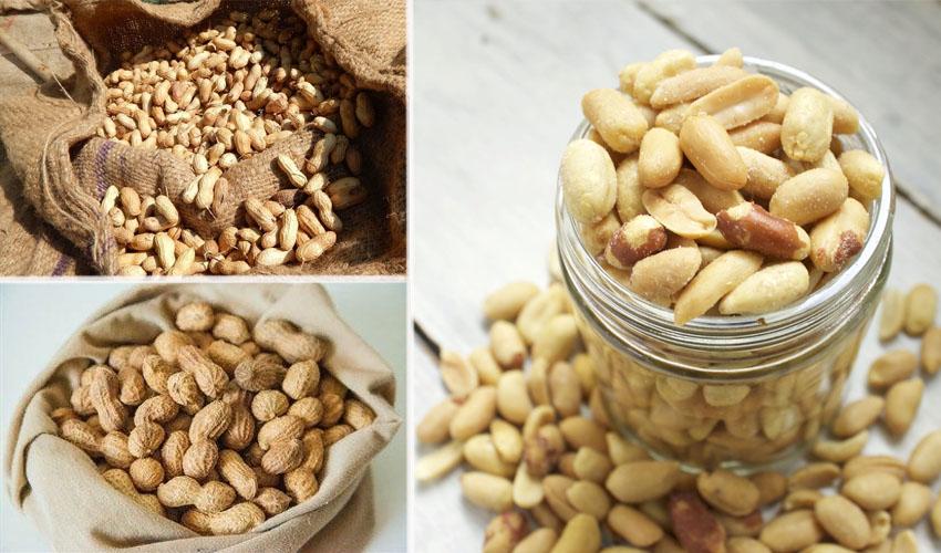 в чем хранить арахис