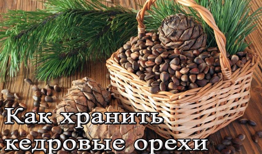 Срок хранения кедровых орехов в скорлупе