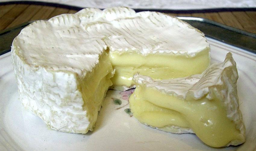 как хранить сыр камамбер