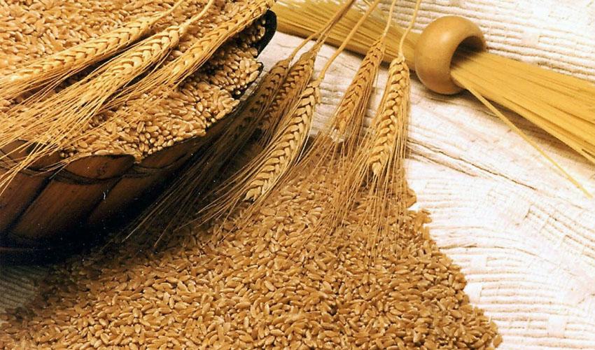 хранение пшеницу