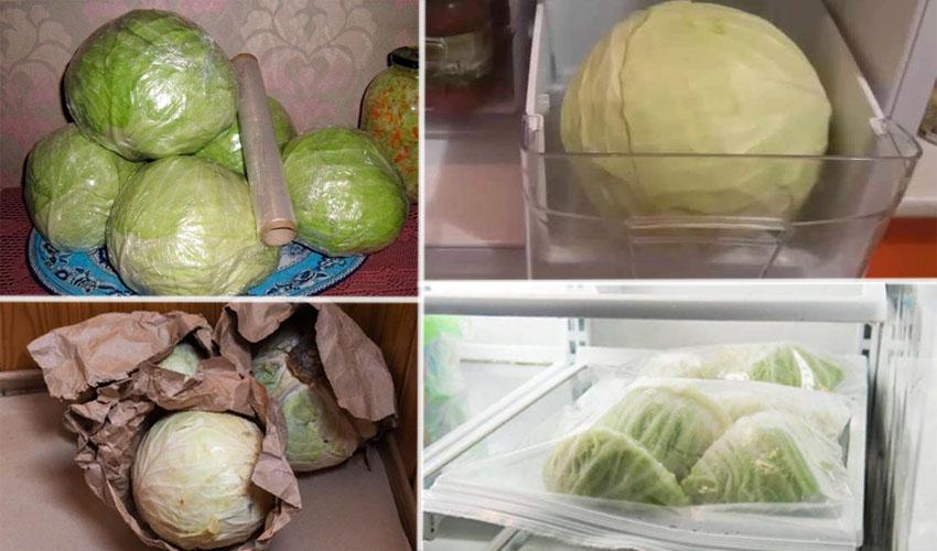 капуста в холодильнике
