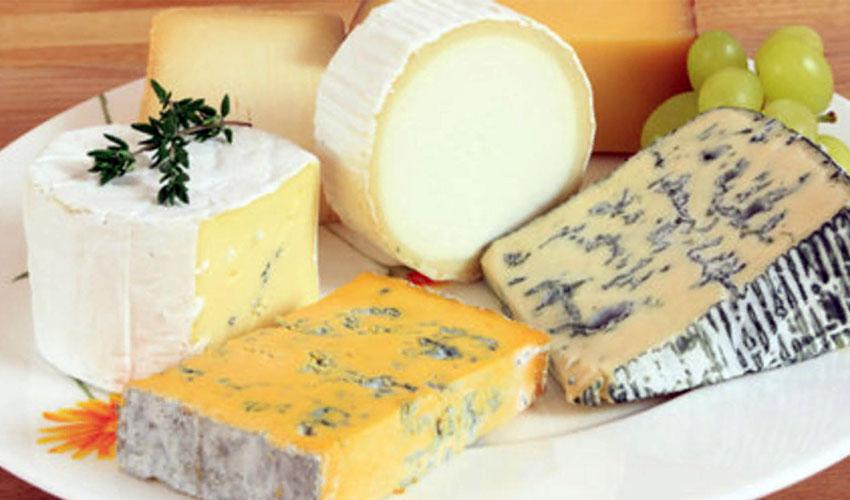 виды сыра с плесенью