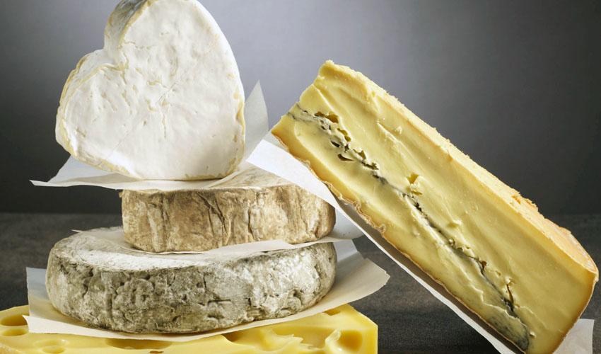 срок хранения сыра с плесенью
