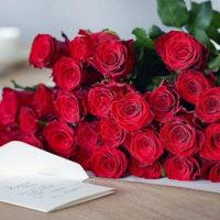 Температура хранения срезанных роз в вазе