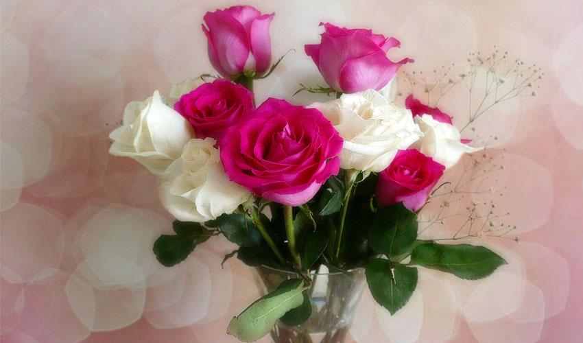 как сохранить розу в вазе
