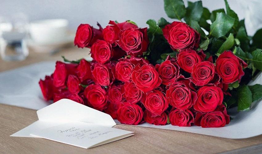 Температура хранения роз, как сохранить свежесть срезанных цветов