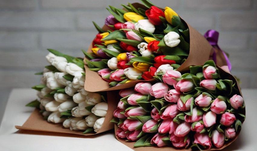 срезанные тюльпаны