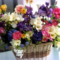 Условия и сроки хранения срезанных цветов