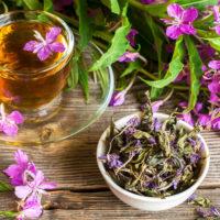 Срок и условия хранения иван-чая