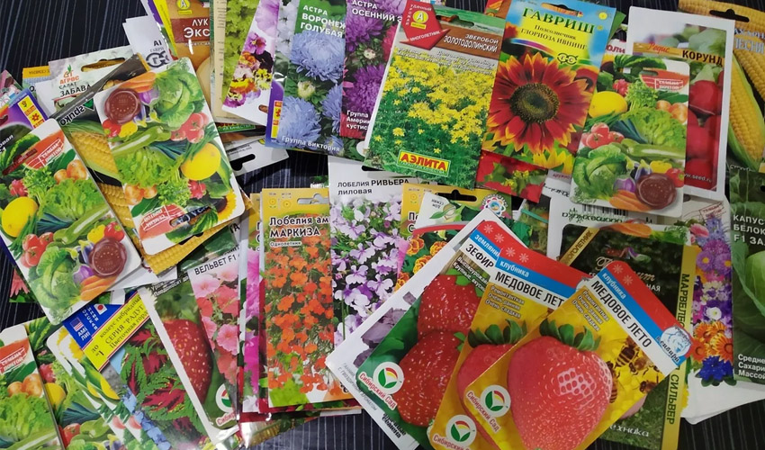 хранение семян дома