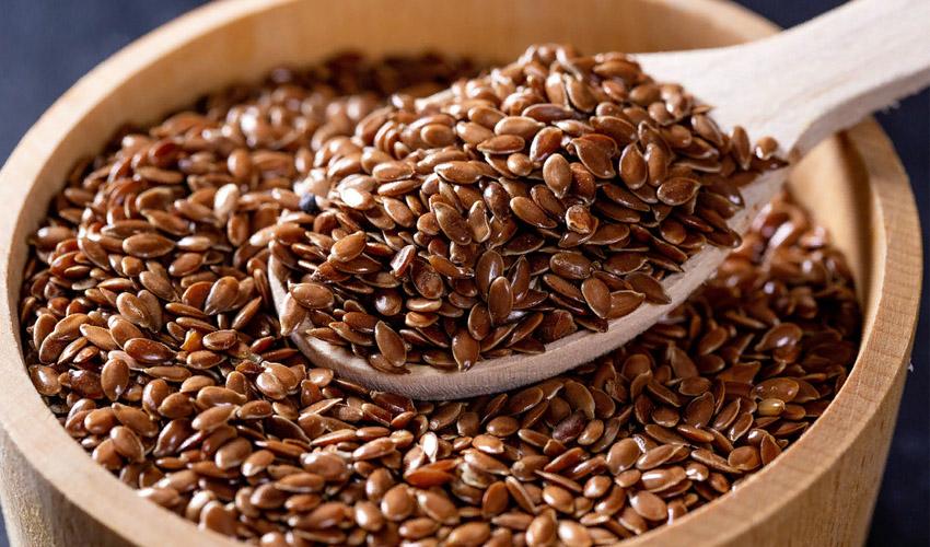 как выбрать семена льна